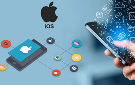 iOS App Development Course in Raipur